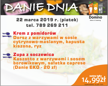 Menu dnia Domino Catering